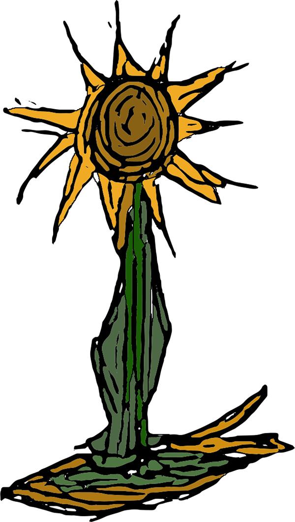 no-sun flower